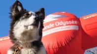 Grande Odyssée Savoie Mont Blanc - 16e édition - Belles images du prologue 11 janvier 2020