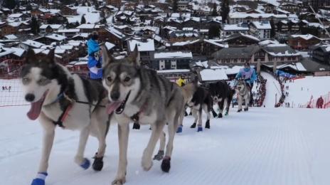 Grande Odyssée Savoie Mont Blanc - 16e édition - Belles images 14 janvier 2020