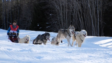 Grande Odyssée Savoie Mont Blanc - 16e édition - Belles images 15 janvier 2020