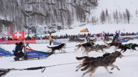 Grande Odyssée Savoie Mont Blanc - 16e édition - Belles Images 19 janvier 2020